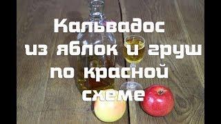 Домашний кальвадос из яблок и груш (бренди, самогон): рецепт браги, перегонка, настаивание