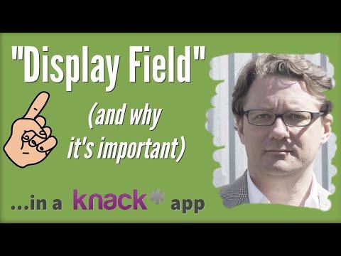 """Display Fields"" in a Knack App (...the low-down)"