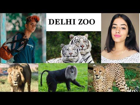 Delhi zoo 🤯🤫🤭. The national Zoological Park . Delhi vlog