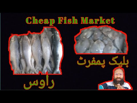 Karachi Cheap Fish Market | #Pakistan