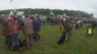 12 Всероссийская выставка охотничьих собак г. Тула 2017 г.