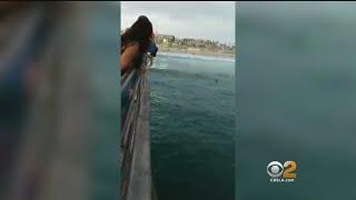Man Takes Risky Jump Off Huntington Beach Pier