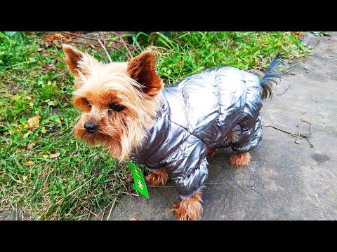 Теплая куртка для собак PET ARTIST / Warm Dog Jacket PET ARTIST