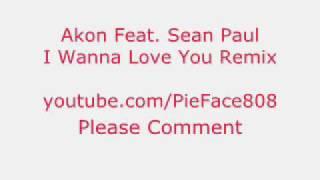I Wanna Love You Remix by Akon Feat. Sean Paul