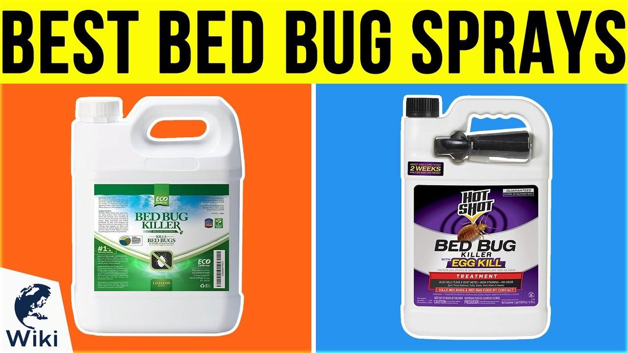 10 Best Bed Bug Sprays 2019