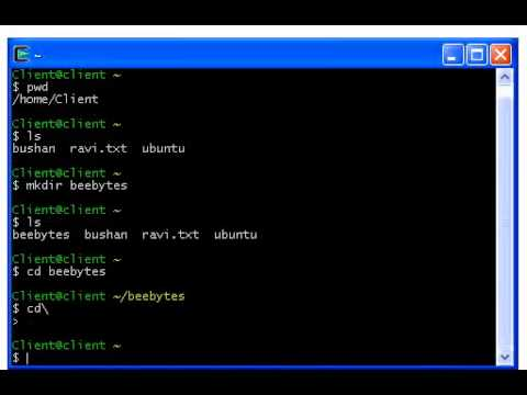 Unix Commands - 02 - Working With Directory Commands