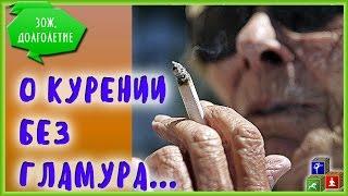 ☠ Так ли вредно курение, как о нем говорят?(Так ли вредно курение, как о нем говорят? Как ни крути - да... Больше видео о здоровье - на нашем канале https://ww..., 2016-12-27T17:52:05.000Z)