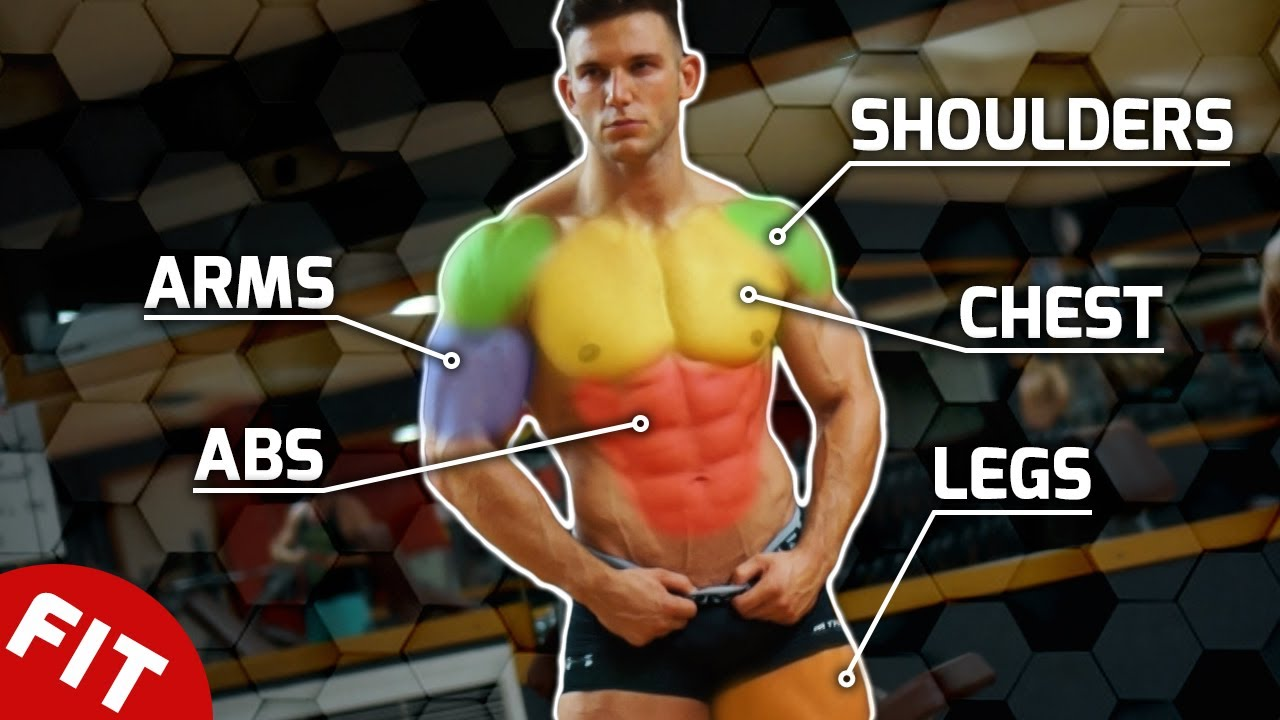 BEST MUSCLE BUILDING EXERCISES – COMPLETE GUIDE