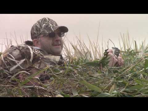 Reelfoot Lake Duck Hunt 2019