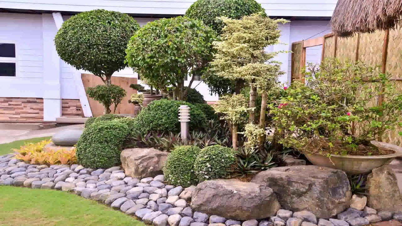 Landscape Design Olive Trees - YouTube