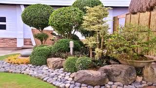 Gambar cover Landscape Design Olive Trees