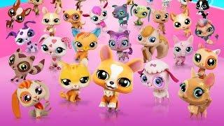 Littlest Pet Shop! Сбор сердечек! Серия 22! Игра Магазин домашних животных