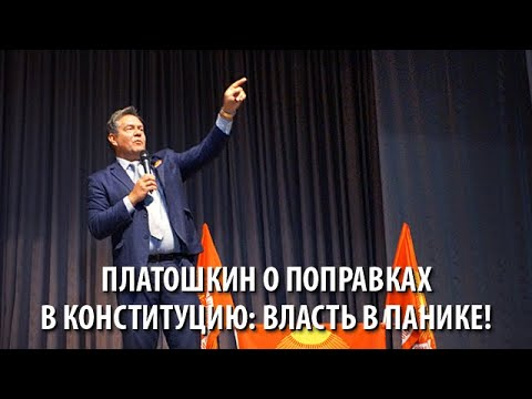 Платошкин о поправках в Конституцию: власть в панике!