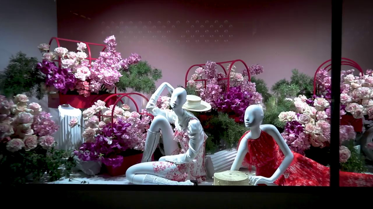 The David Jones Flower Show 2018 The Windows Youtube