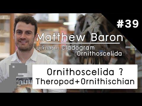 Explain #39 Ornithoscelida ( Theropod + Ornithischia ) ?