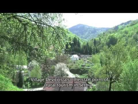 Magnolia in Serbian village Devici