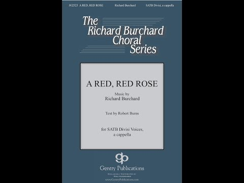 A Red Red Rose - by Richard Burchard