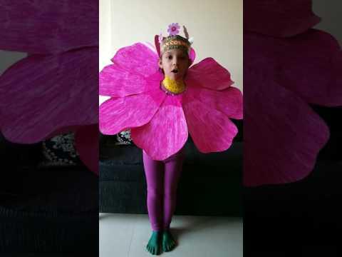 Tanisha Jobanputra dresses up as Mexican Cosmos flower sr kg NL Dalmia high school
