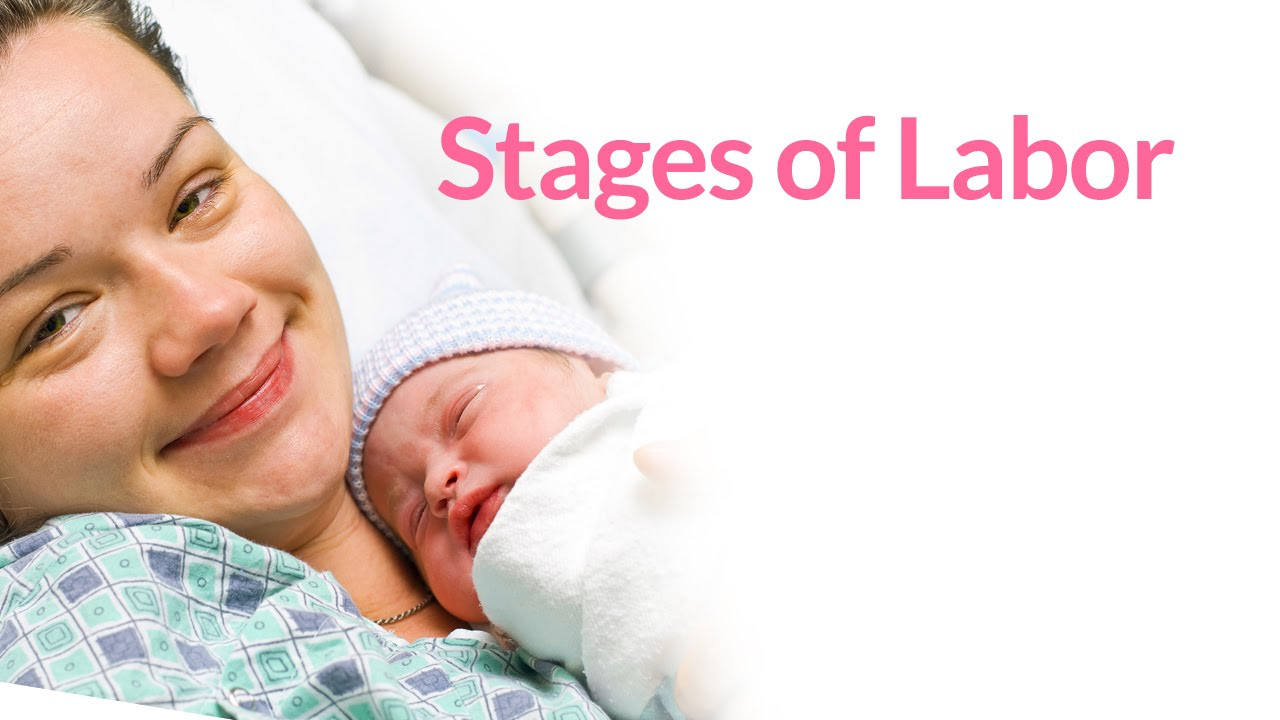 The 3 Stages of Labor by PregnancyChat com