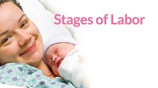 The 3 Stages of Labor by PregnancyChat.com