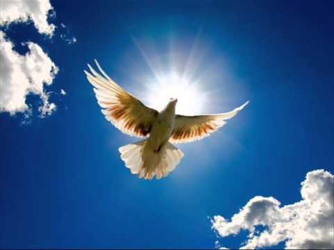 Hal Ketchum - Wings of a Dove