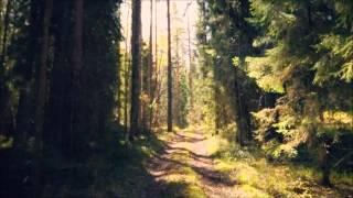 Ketonen - Afternoon Tune