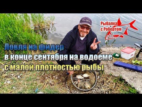 Ловля на фидер в конце сентября на водоеме с малой плотностью рыбы