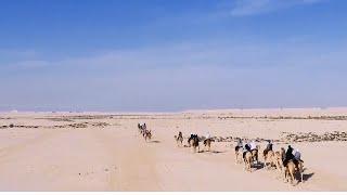 Desert Caravan Challenge 2015