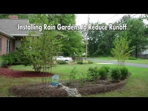 Installing Rain Gardens to Reduce Runoff