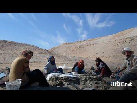 ديناصور مصري عمره 70 مليون سنة .. تعرف على القصة الكاملة مع شريف عامر