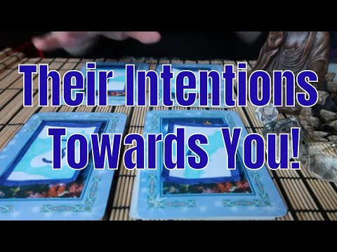 PICK A CARD ** Their Intentions Towards You ** (Timeless)