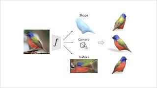 Learning Category-Specific Mesh Reconstruction  from Image Collections