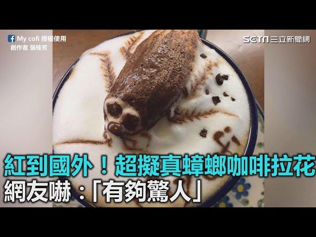 紅到國外!超擬真蟑螂咖啡拉花 網友嚇:「有夠驚人」|三立新聞網SETN.com