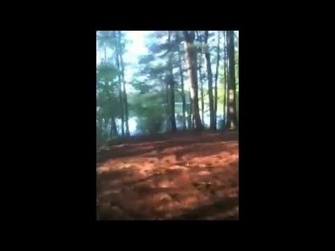 Caribou - Lalibela (Walden Mix)