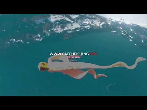 Baixar Water Wings - Download Water Wings | DL Músicas