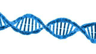 Как сделать тест на ДНК на отцовство без ведома отца?