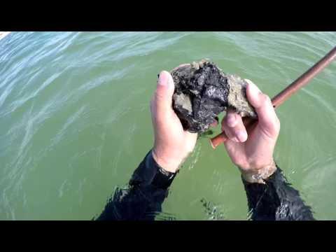 Подводный поиск на Азове SCUBA-ЗОЛОТО, СЕРЕБРО/HD