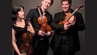 Max Reger, Serenade Op.141a, Trio for two violins and viola