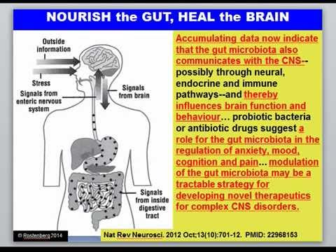 The Gut Origin of Methylation Problems | Beyond MTHFR