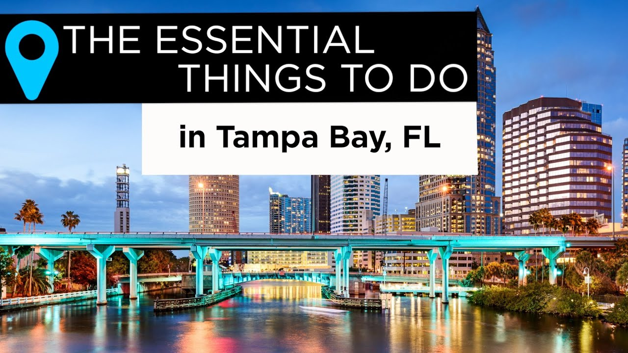 The essential things to do in tampa bay florida local for Nyc stuff to do