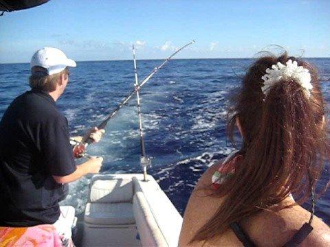 Dolphin fishing florida youtube for Dolphin fishing florida