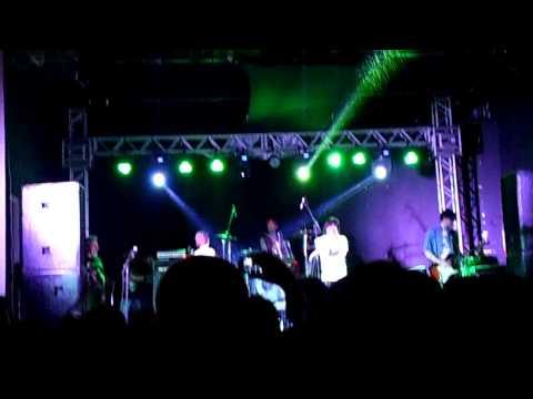 RHCP By Organics -  Dani California ( Live in Music Hall )