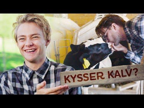 KYSSER KALV?!   GÅRDSKAMPEN   EP1