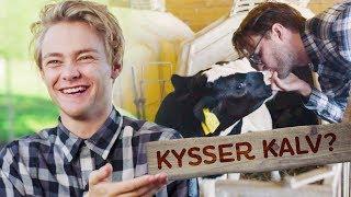 Download KYSSER KALV?! | GÅRDSKAMPEN | EP1 Mp3 and Videos