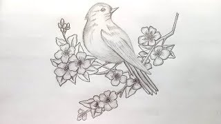 bird sketch step draw birds pencil drawing flowers easy drawings sketches shading paintingvalley explore paintings