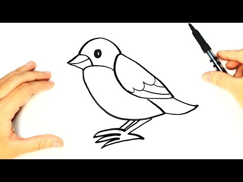 Cómo dibujar un Pájaro paso a paso para niños | Dibujo de animales para niños