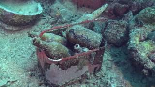 Cultureel erfgoed onder water