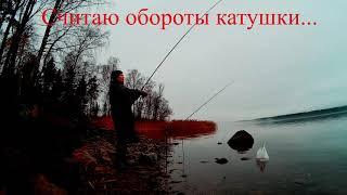 Рыбалка на фидер в ноябре. Озеро Суходольское. Фидер на Суходольском