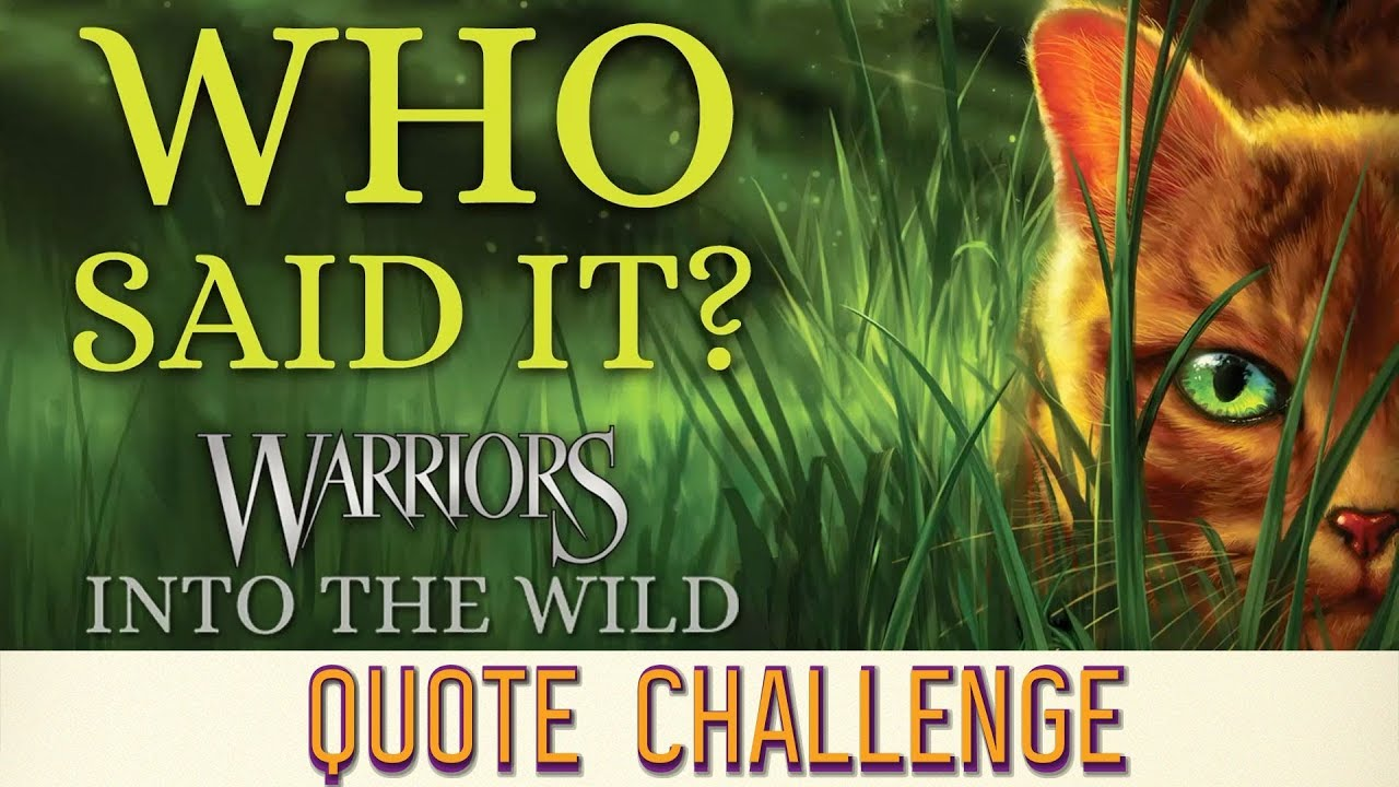 Cats into book wild warrior the