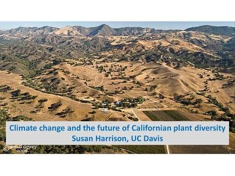 The future of plant diversity in a warmer, drier California